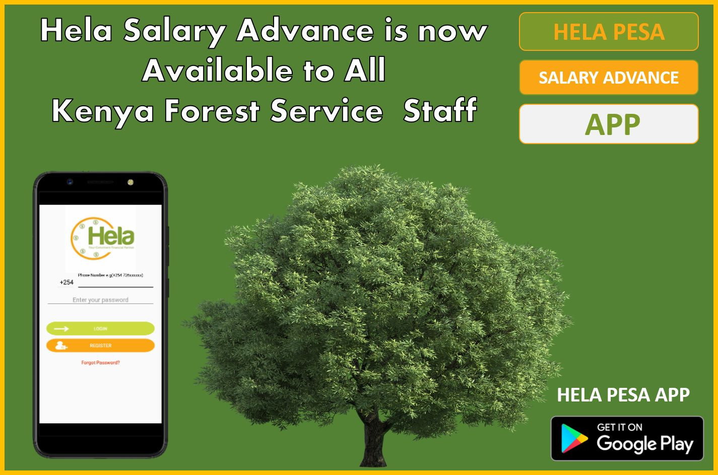 Kenya Forest Services